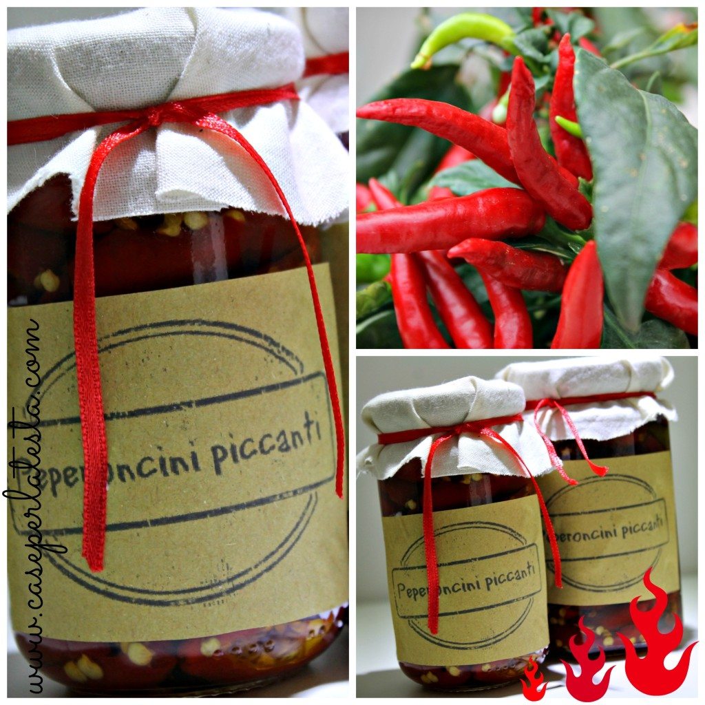 ricetta peperoncini, regalino edibile fai da te per natale, regalo handmade