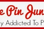 The Pin Junkie Logo 330x100