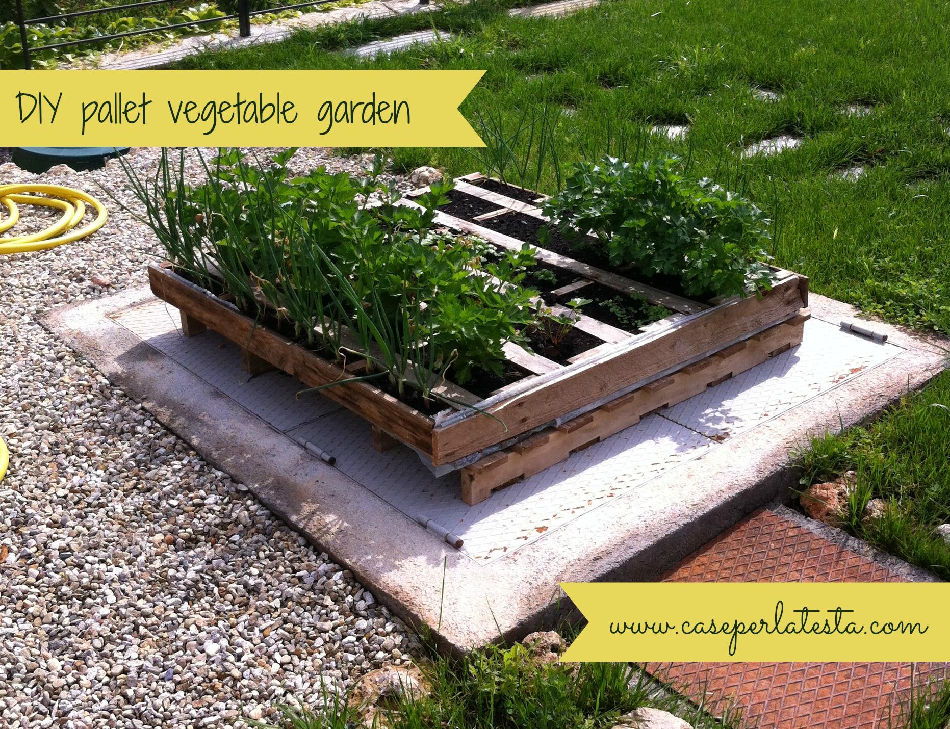 Orto fai da te con pallet diy pallet vegetable garden for Pallet fai da te
