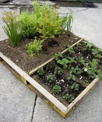 Portable-pallet-garden