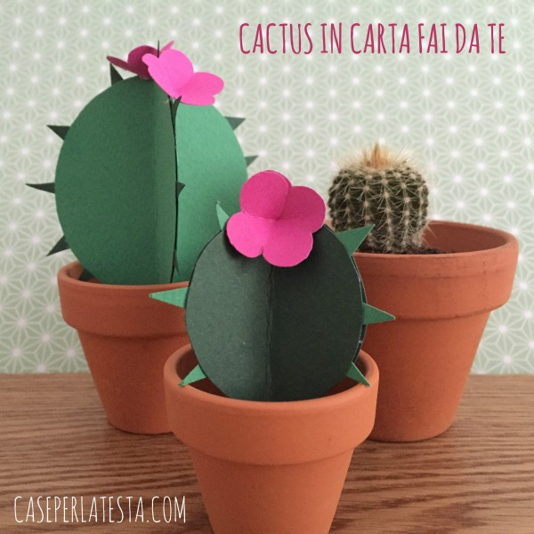 Cactus_in_carta_fai_da_te